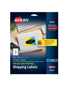 Avery Matte White Ink Jet Labels 3-1/3 x 4 120 per Pack (8254) 8254